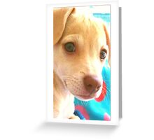 I love you this much♡ Greeting Card