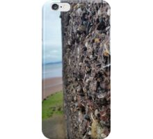 Wall of Rocks with Beach Background iPhone Case/Skin