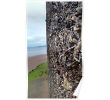 Wall of Rocks with Beach Background Poster
