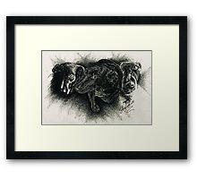Hershey Framed Print