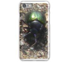 Closeup of Dogbane Leaf Beetle, I think.... iPhone Case/Skin