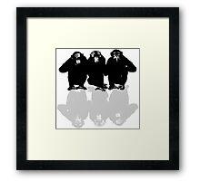 3 Monkeys Framed Print