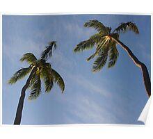 Palms: Honolulu, Hawai'i Poster