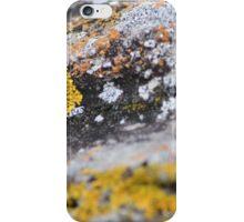 Seaside; Mossy Granite iPhone Case/Skin
