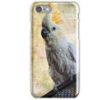 Elegant Lady iPhone Case/Skin