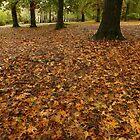 Lotta Leaves by WildestArt