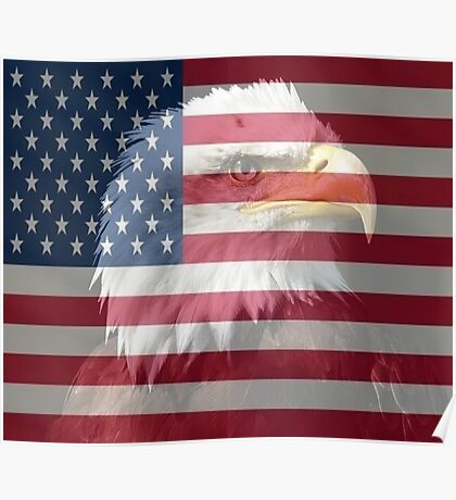 The Spirit of the American Eagle Poster