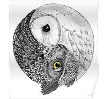 Owls Yin Yang Poster