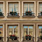 Windows Eight ©  by © Hany G. Jadaa © Prince John Photography