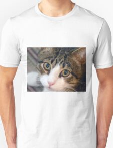 Sweet Boy Unisex T-Shirt