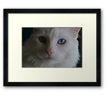 """""""I'm ready for my close up, Mr. Demille"""" Framed Print"""