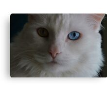 """""""I'm ready for my close up, Mr. Demille"""" Canvas Print"""