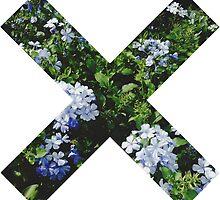 XX by kennedyolson20