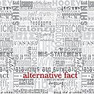 Alternative Fact by MStyborski