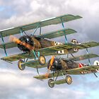 Two Little Fokkers - HDR - Dunsfold 2014 by Colin  Williams Photography