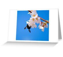 A bee in the sky Greeting Card