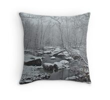 Dressed in White For Winter's First Snow Throw Pillow