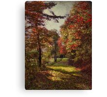 A stroll among the fall leaves Canvas Print