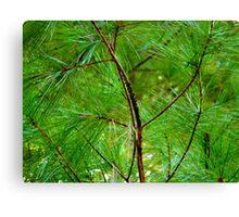 Monochrome - Green   ^ Canvas Print