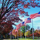 Flags by ANNABEL   S. ALENTON