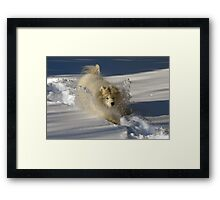 Snowplow Framed Print