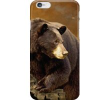 The Bear Went Over The Mountain iPhone Case/Skin