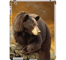 The Bear Went Over The Mountain iPad Case/Skin
