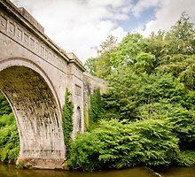 Montegue Bridge Dalkeith by Cassidy Bennett