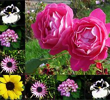 Floral Collage featuring Two Pink Roses by BlueMoonRose
