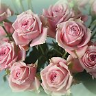 Pretty Pink Roses by AuntDot