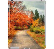 Fall Along Lake Nevin iPad Case/Skin