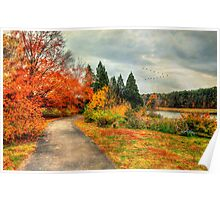 Fall Along Lake Nevin Poster