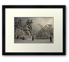 Heavy Laden Framed Print
