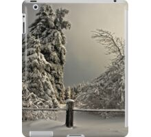 Heavy Laden iPad Case/Skin