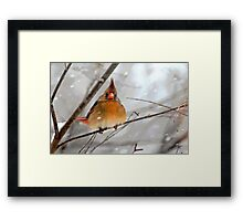 WHAT THE ... ????? Framed Print