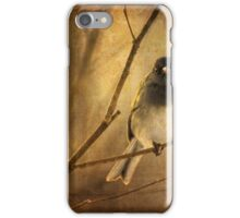 Backlit Birdie Being Buffeted iPhone Case/Skin