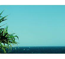 Pandanus,Sea 'n Sky Photographic Print