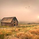 Morning Flight by John Poon