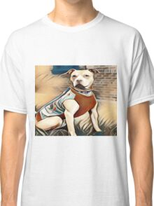 The Friendly Well Groomed Pit Bull Classic T-Shirt