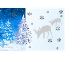 A blue Christmas on all products (5254 Views) Photographic Print