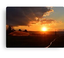 Farming Canvas Print