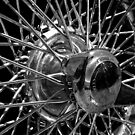 Spokes by Linda Bianic