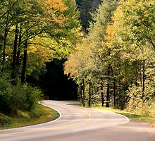 Smoky Mountain Winding Way by ArdenBryant