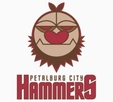 Petalburg City Hammers Kids Clothes