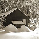 Sepia Cabin by Chet  King