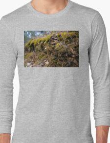 Moss macro Long Sleeve T-Shirt