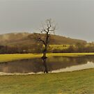 The Flooded Meadow by wiggyofipswich