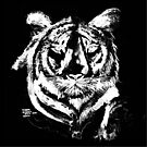 Tiger in Chalk T SHIRT/ART/PILLOW by Shoshonan