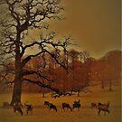 Red Deer & The Dormant Oak Tree by wiggyofipswich
