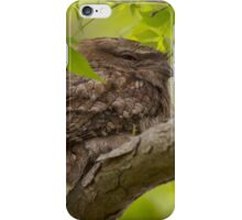 Before A Storm iPhone Case/Skin